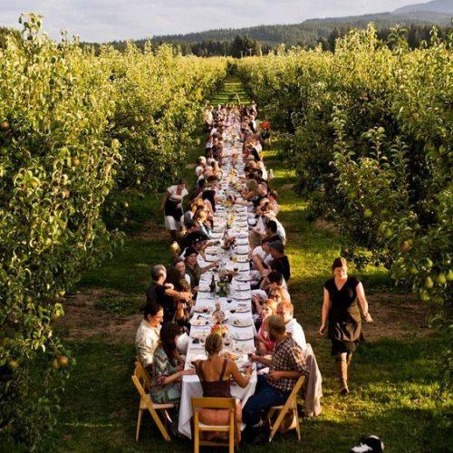 route_des_vins_dineren_wijngaarden_foto 1
